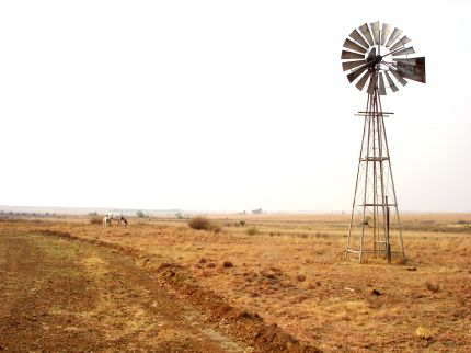 Freestate ©Renate Engelbrecht