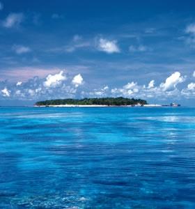 Green Island, Australia...best place I've been so far! #travel #travelphotography #travelinspiration #australia #wanderlust #YLP100BestOf