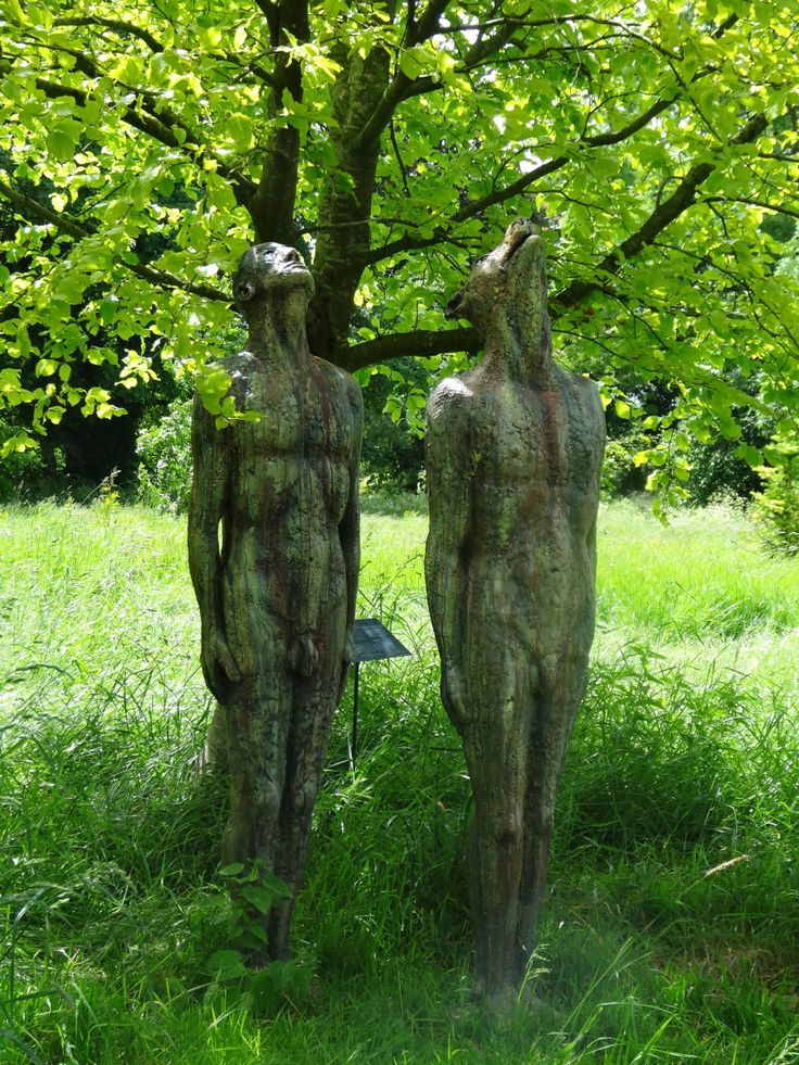 Blue moon iii. Catherine Greene. At Burtown House - one of my very favourite gardens.
