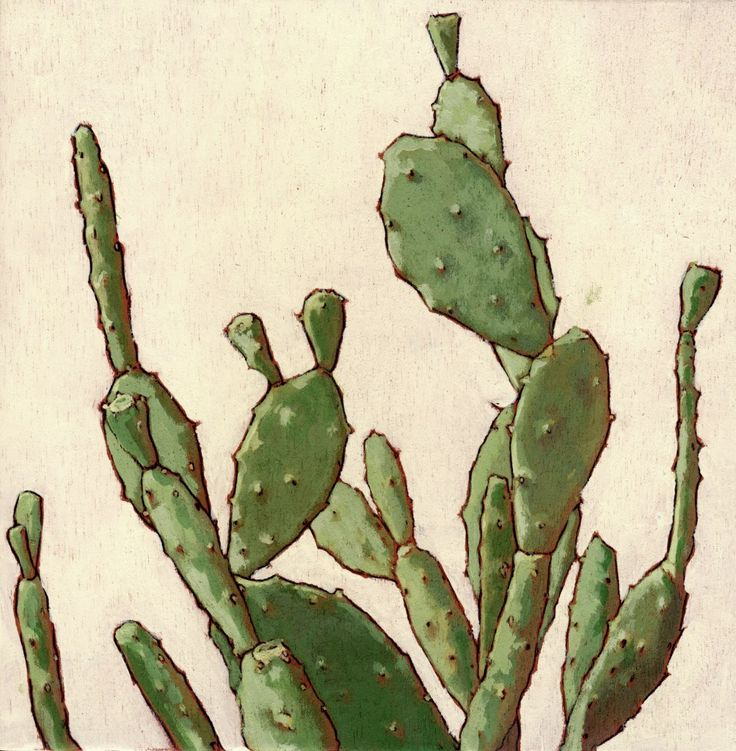 Cinta Vidal, 'Plants' Serie. 2014