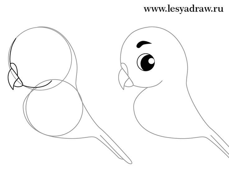 Wenn Sie einen Papagei selber malen wollen, dann sind Sie genau richtig gekommen. Hier finden Sie die Anleitung dafür. Schauen Sie mal...