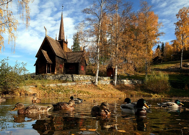 Autumn in Lillehammer, Norway...where my great grandparents met.