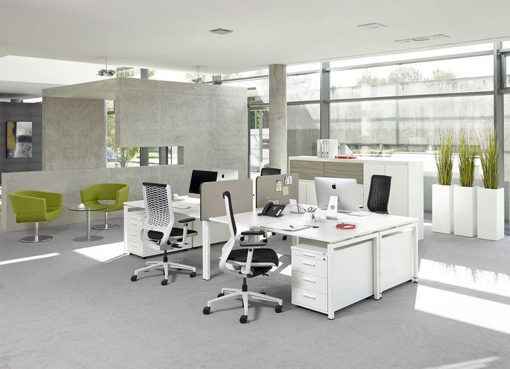 Schreibtisch Trento von Febrü: Mit dem modernen Schreibtisch weiß von Febrü  lassen sich ideal Einzel- und Doppelarbeitsplätze oder Open Space Büros ausstatten.