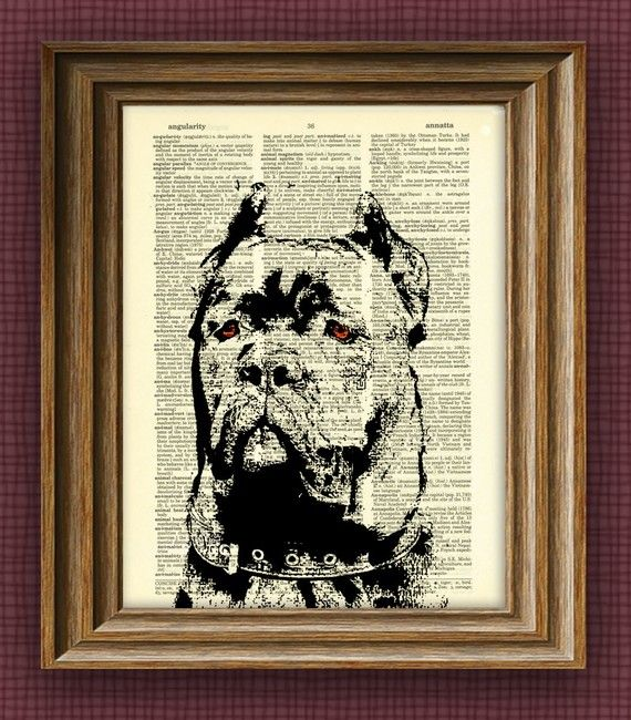 CANE CORSO dog beautifully upcycled vintage by collageOrama
