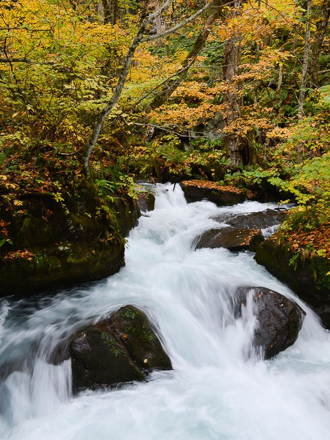 Oirase Rapids  Towada Japan, they were always so amazing to see