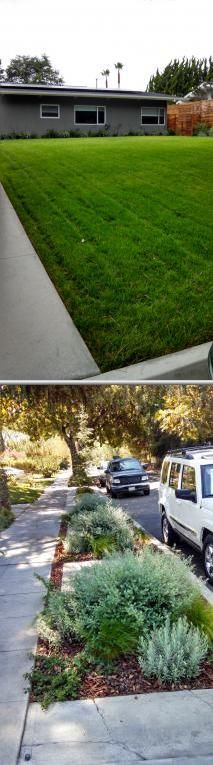Select this firm if you need a lawn landscape maintenance service. They offer fertilization, planting, irrigation repair, and landscaping.
