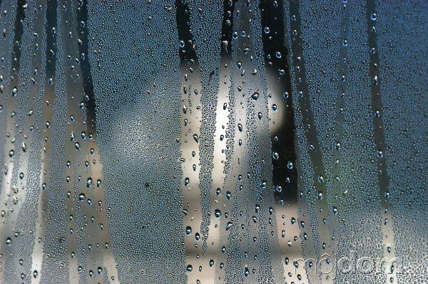 Trápia vás zarosené okná?