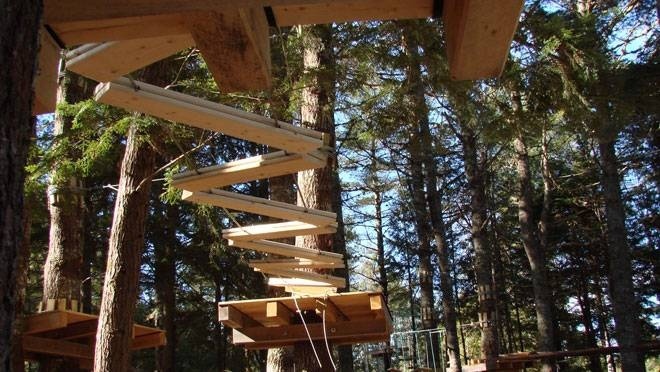 On Tree Park is located at Ski Martock in the Valley!   http://www.ontreepark.com/  It features a kids' course, and adult courses! Take part in many climbing obstacles, zip lines and tree-top walks! Check out their website for more info! :)