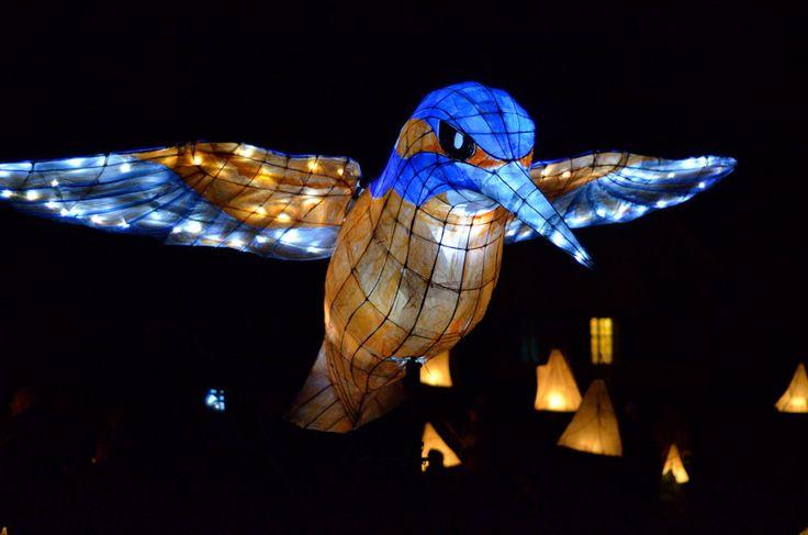 Okehampton Lantern Parade 5 | by jonshort58