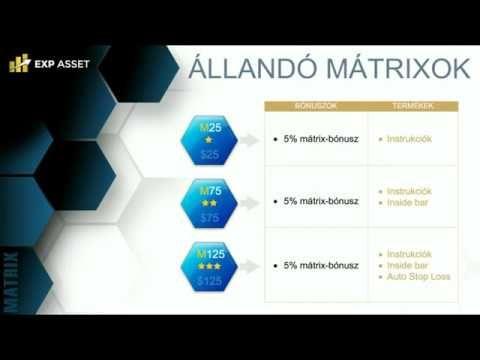 EXP Mátrix prezentáció