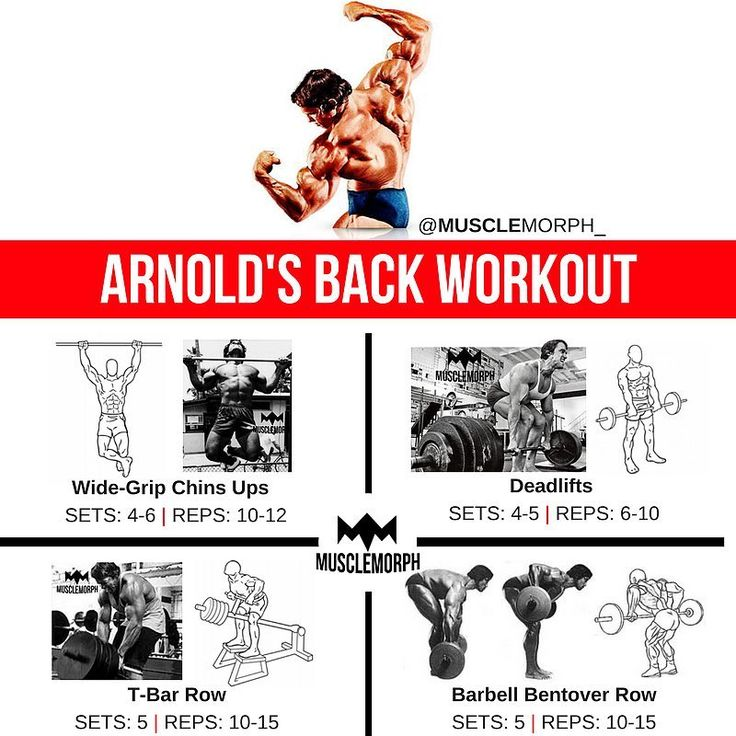 """4,250 Likes, 20 Comments - MuscleMorph® (@musclemorph_) on Instagram: """"Train Your Back Like Arnie 👆🏻LIKE/SAVE IT if you found this useful. FOLLOW @musclemorph_ for more…"""""""