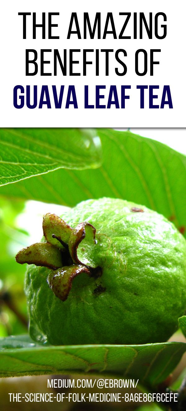 """""""According to a study published by the National Institutes of Health (NIH), guava leaf tea can help lower..."""""""