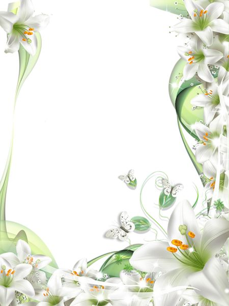 Transparent PNG Photo Frame with White Lilies Flowers   Stationnaire ...