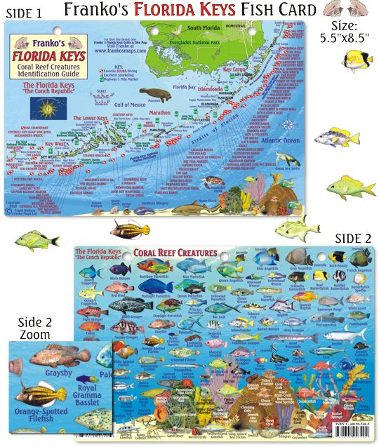 Best Places In Florida For Fishing: 1000+ Ideas About Florida Keys Map On Pinterest