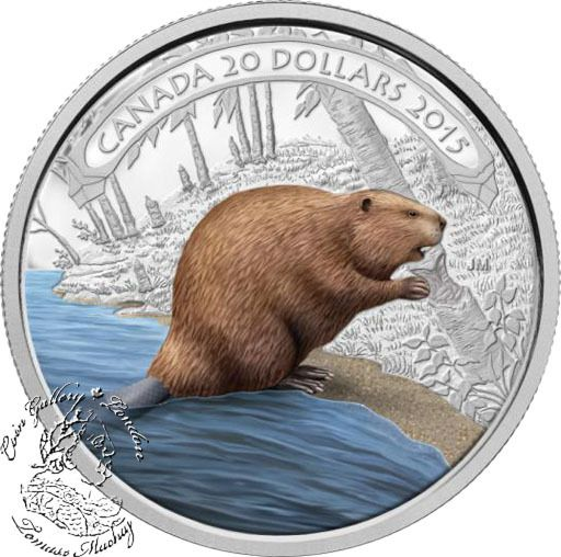 Coin Gallery London Store - Canada: 2015 $20 Beaver at Work Coloured Silver Coin, $99.95