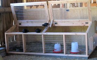 Coop Story: Visit Dickie Bird Farm -- Community Chickens - I love this brooder design!