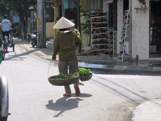 pino l - Hoi An Vietnam Recensioni dell'utente - TripAdvisor