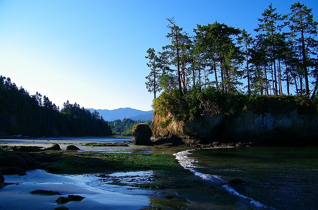 I really should keep this pristine place a secret...don't tell anyone, ok? Salt Creek, on the Strait of Juan de Fuca.