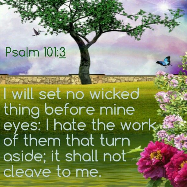 Psalm 101:3 kjv I will set no wicked thing before mine eyes: I hate the work of them that turn aside; it shall not cleave to me.