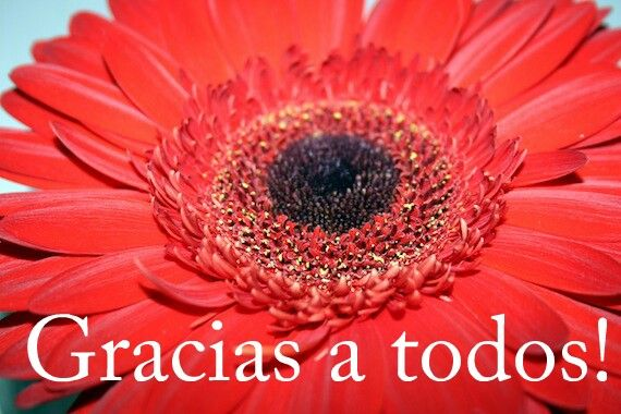 Muchas Gracias Por Todas Las Felicitaciones My Life