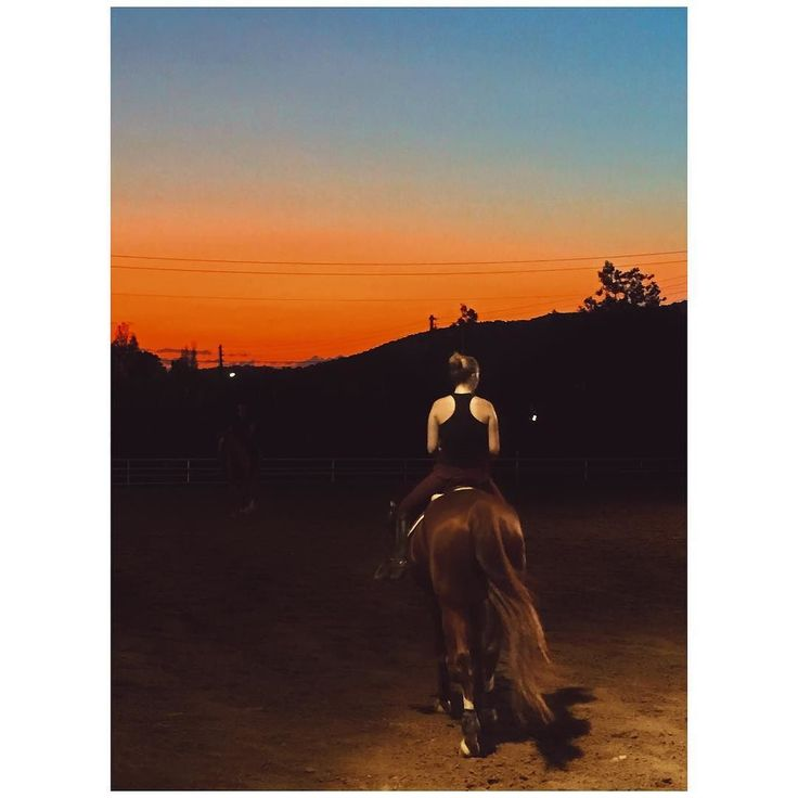 Ride off into your sunset   ______________________________________________________  #horseriding #sunset #majestic #skyporn #scenery #lover #lifo #lifestyle #living #horse #picoftheday #athensvoice #ig_greece #ig_daily #dailylife #adventures #visitgreece