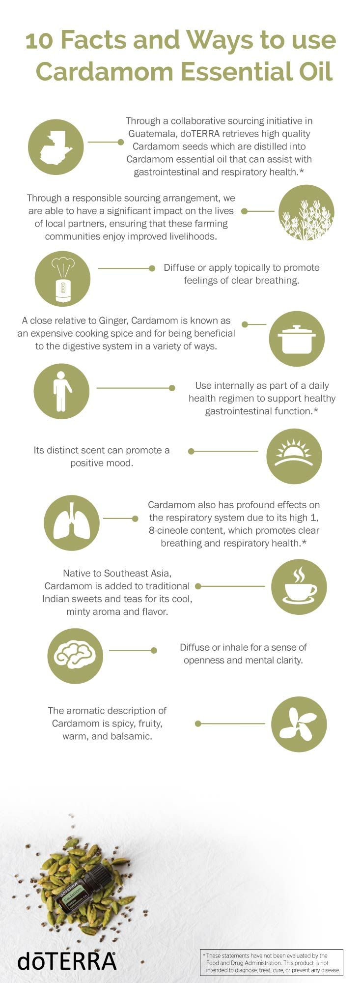 Cardamom essential oils is a versatile tool for your wellness. Here are 10 facts and ways to use this precious oil.