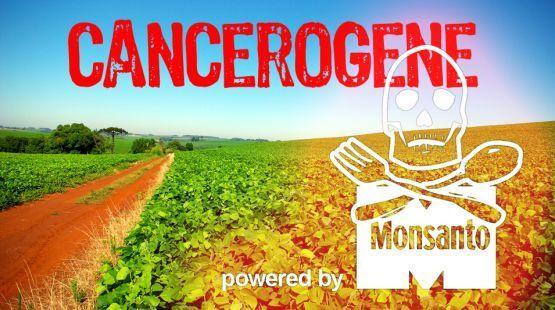 Pétition - Roundup, soja transgénique : Stop aux poisons de Monsanto ! - Sauvons la Forêt