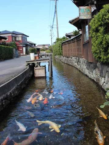 Hagi, Yamaguchi, Japan