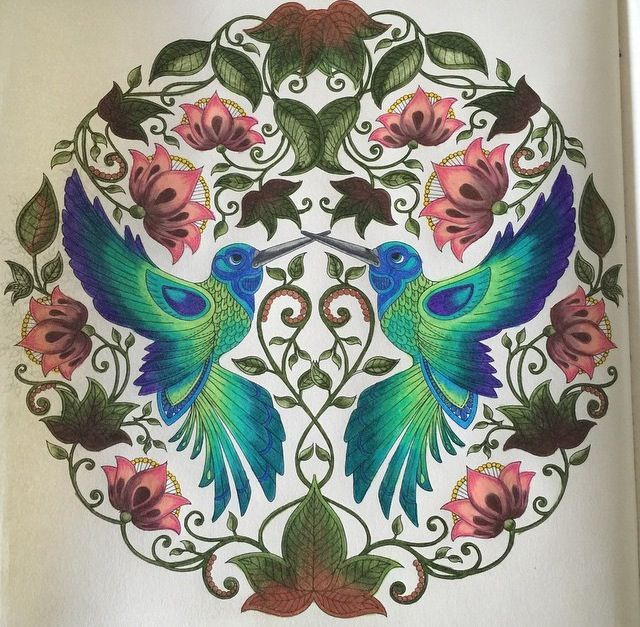 Jardim Secreto Secret Garden Humming BirdsAdult ColoringColoring BooksBird