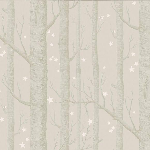 17 meilleures id es propos de papier peint bouleau sur pinterest papier peint d 39 oiseau. Black Bedroom Furniture Sets. Home Design Ideas