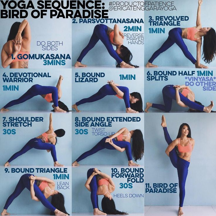 YOGA SEQUENCE: BIRD OF PARADISE Warm up: Sun Salutation AB x5 each YouTube if unsure 1. GOMUKASANA The secret to not feeling like your shoulder is going to dislocate in a bind is Gomukasana reverse prayer the 3 mins is going to feel like shit, I understand Im with you but trust me that everything is going to be ok 2. PARSVOTTANASANA Dont forget the prayer hands k? if it jacks up your wrists just hold onto opposite elbows, Ive put the two shittiest parts of the sequence up first so you...