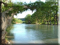 Guadalupe River: Favorite Places, 29 Years, Years Straight, Rivers T-Shirt, Guadalupe Rivers, Family Vacations, Families Vacations, Possible In Texas,  Lakeshore