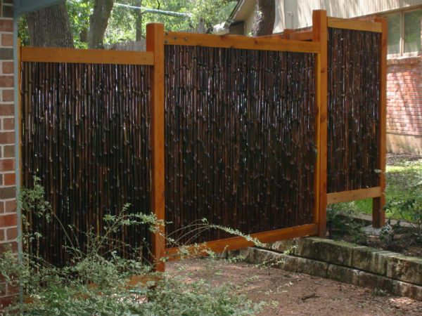 Best 25 bamboo privacy fence ideas on pinterest how to for Bamboo ideas for backyard