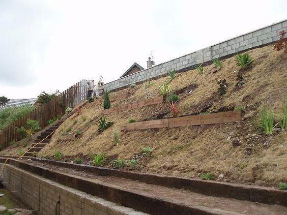 Steep Sloped Back Yard Landscaping Ideas | Planting ... on Steep Hill Backyard Ideas id=44469