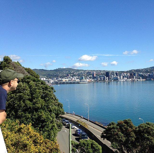 a new favourite vantage point #Wellington #NewZealand #itsTime2Go!
