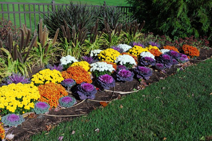 Fall Flower Beds Google Search Fall Landscaping 400 x 300