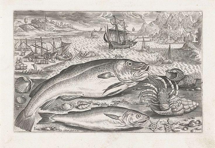 Adriaen Collaert | Twee vissen op het strand, Adriaen Collaert, after 1598 - 1618 | Een kabeljauw, een wijting en een hermietkreeft liggen samen met wat schelpen aangespoeld op het strand. Op de achtergrond de zee en een havenkade. De prent maakt deel uit van een serie met vissen als onderwerp.