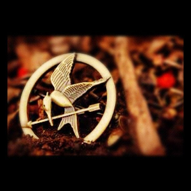 The Hunger Games a great fantasy book and a great film via @J10Perez