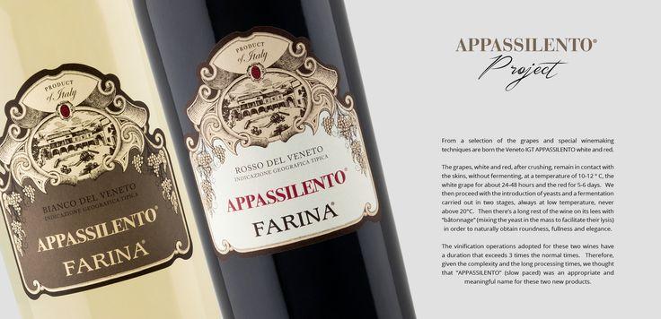 Farina » Vini della Valpolicella Classica