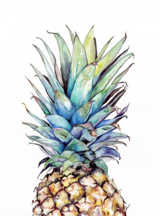TITLE: Pineapple  SIZE: 8X10, 11X14 , & 16X20 (prices vary per size)  Custom Sizes available contact seller for pricing  PRINT: Archival Giclee print on Archival Fine Art Paper All designs are done by myself, please do not use without my permission. Purchase of artwork does not mean purchase of copyright. Thank you