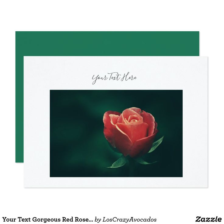 Your Text Gorgeous Red Rose Flower Invitation