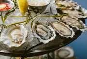 The 20 Best Seafood Restaurants in Chicago - Thrillist