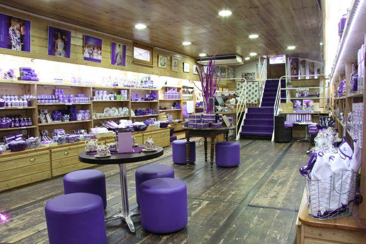Sur la p niche maison de la violette vous trouverez des for Maison violette