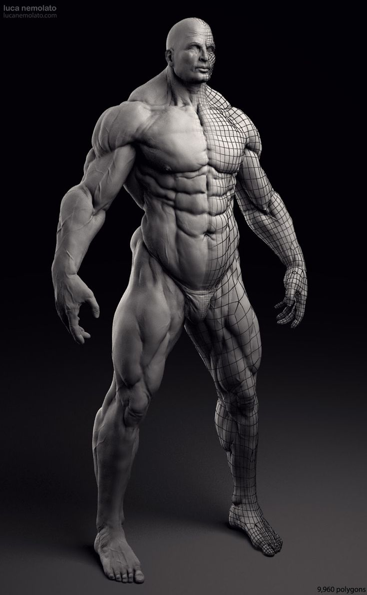 Extreme Bodybuilder - vray renders