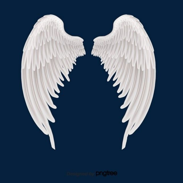 White Angel Wings And Feathers Angel Angel Wings White Png Transparent Clipart Image And Psd File For Free Download White Angel Wings Angel Wings Drawing Wings Wallpaper