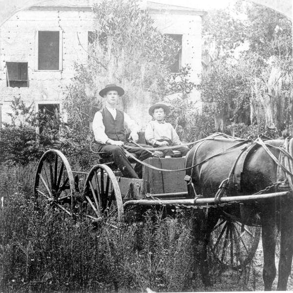 A young man and boy sit in a horse-drawn wagon - Sarasota, Florida