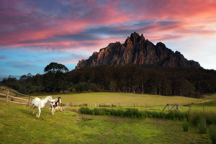 A serene shot of Mt Roland in the north of Tasmania; Mt Roland is situated approx. half way between Sheffield and Cradle Mountain and is a great spot for bush walking, both varying in length and difficulty.