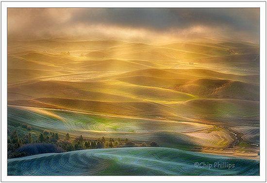 Golden Sunlight over Palouse region