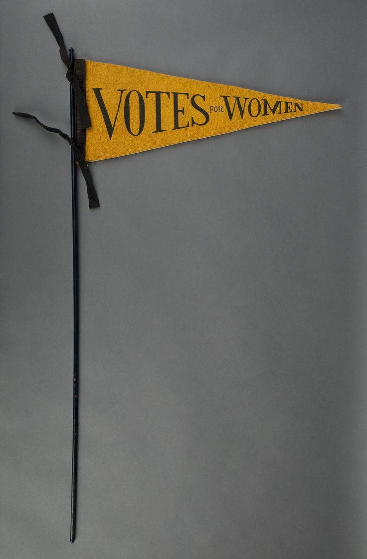 best images about suffrage battle for the th amendment on votes for women pennant