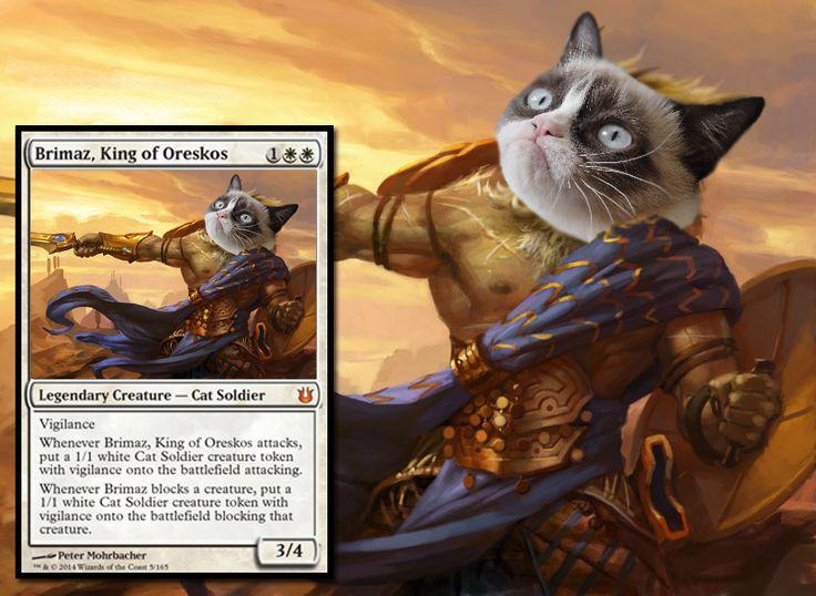 Brimaz Grumpy Cat Mtg Art And Alters Magic The Gathering